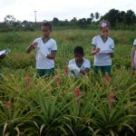 Escola rural Tina de Carvalho